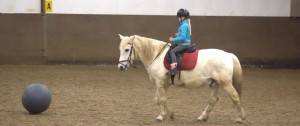 paardenvoetbal-1-1024x430